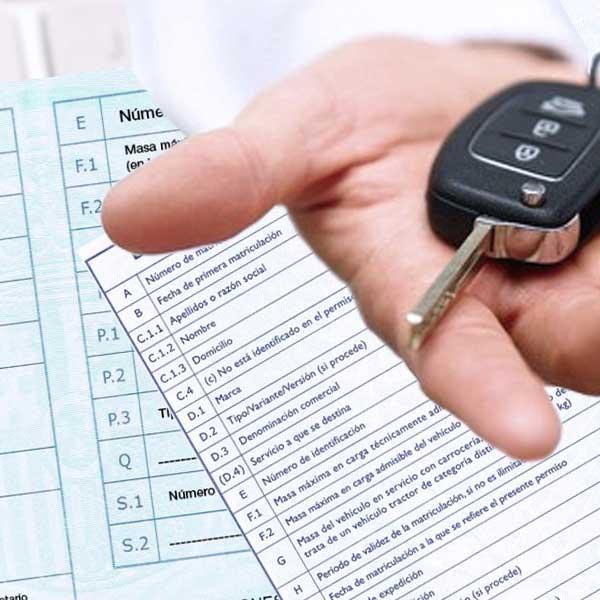 Gestionem transmissions de vehicles.Lliurament immediat del permís provisional
